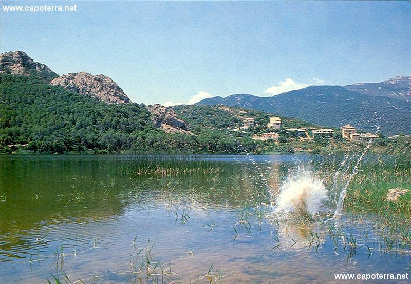 Poggio dei Pini - Laghetto artificiale sul rio San Girolamo