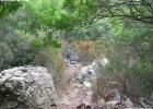 Commemorazione_18-09-05_Conca_dOru_GIULIA_Massaiu_034_(25)