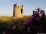 Torre costiera di Su Loi