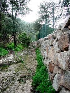 L'accidentata via di accesso alla sorgente di Santa Barbara, ricavata nell'affioramento granitico naturale e in parte solcata da antiche carrate